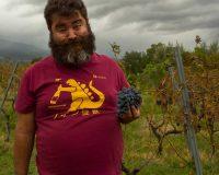 Vini Artigianali Acino (6)