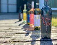 Vini Artigianali Caniette (1)