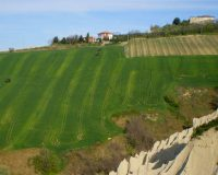 Vini Artigianali Caniette (4)