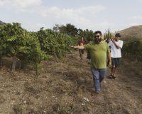 Vini-artigianali-Acino (7)