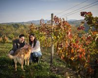 Vini-artigianali-Antico-Castello (4)