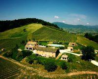 Vini artigianali Colpaola (1)