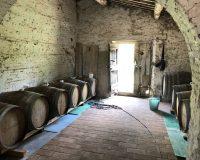 Vini artigianali Cuna (2)