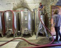 Vini-artigianali-Dirupi (1)