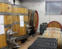 Vini-artigianali-Failoni (1)