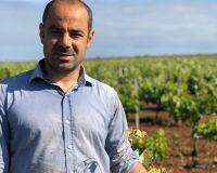 Vini-artigianali-Ferracane (2)