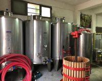 Vini-artigianali-Ferracane (9)