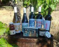 Vini artigianali La Casa dei Cini (2)