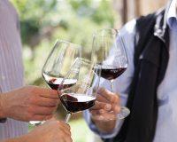 Vini-artigianali-La-Magia (5)