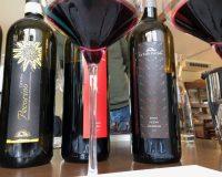 Vini artigianali La Valle del Sole (8)