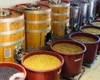 Vini artigianali Macchion dei Lupi (2)_1