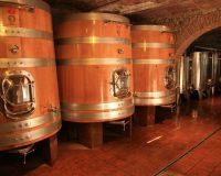 Vini artigianali Macchion dei Lupi (3)