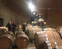 Vini-artigianali-Maso-Grener (10)