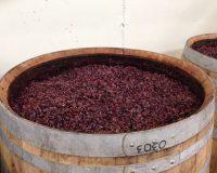Vini-artigianali-Maso-Grener (2)