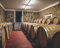 Vini-artigianali-Tenuta-Stella (5)