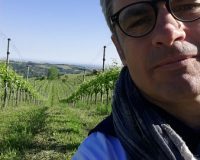 Vini-artigianali-Terraquilia (5)