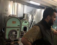 Vini artigianali Tomassetti (8)