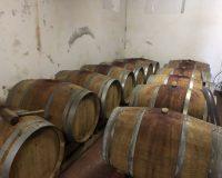 Vini artigianali Tomassetti (9)
