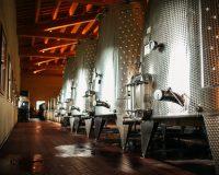 Vini-artigianali-Valle-Reale (1)