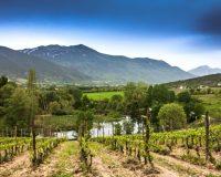Vini-artigianali-Valle-Reale (10)