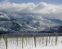 Vini-artigianali-Valle-Reale (9)