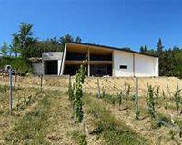 Vini artigianali Vigna della Cava (1)