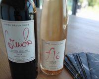 Vini artigianali Vigna della Cava (2)