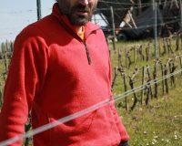 Vini-artigianali-Vittorini (9)