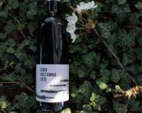 Vini artigianali Voltumna (1)_1