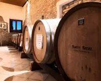 Vini artigianali Fioretti Brera (2)