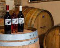 Vini artigianali Fioretti Brera (3)